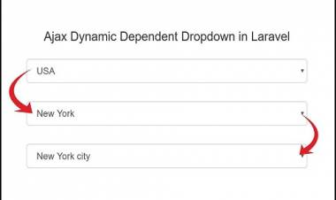 Laravel Dependent Table . get Districts By Division, get Thana By District.